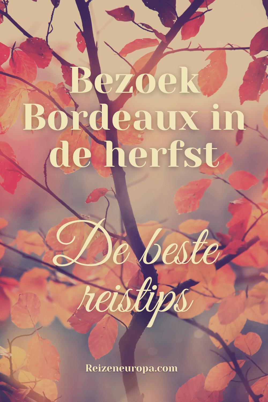 Bordeaux in de herfst